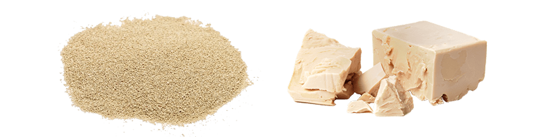 Zinzino Xtend: čerstvé pekárenské kvasnice; dôležité minerály