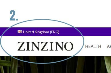 How To Order Zinzino Products for Success 2020