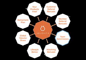 Velovita Business Opportunity - Compensation Plan Options